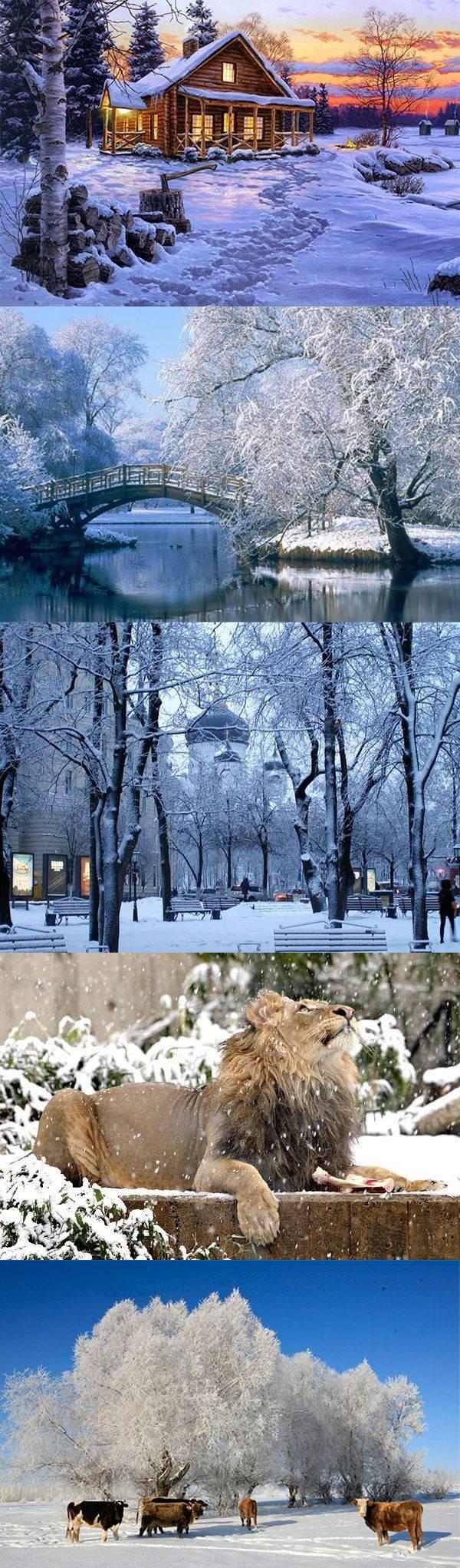 30 красивых зимних пейзажей