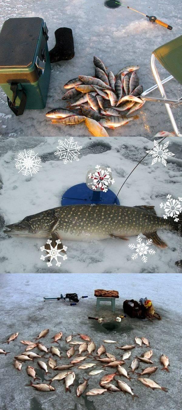 Зимняя рыбалка, или Как я познакомилась с увлечением своего мужа