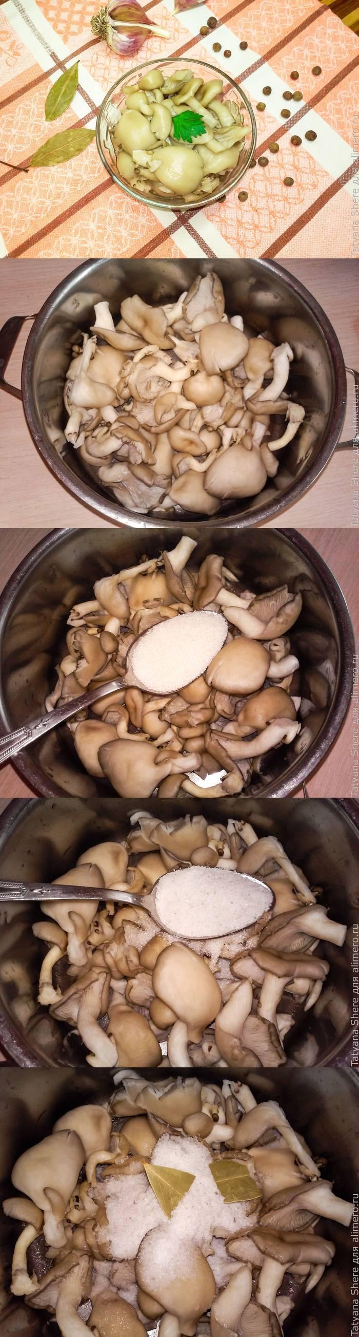 Маринованные грибы – вешенки