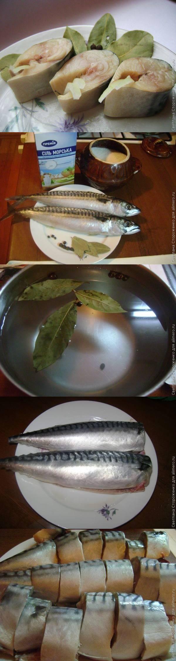 Фото рецепт приготовления скумбрии соленой в домашних условиях