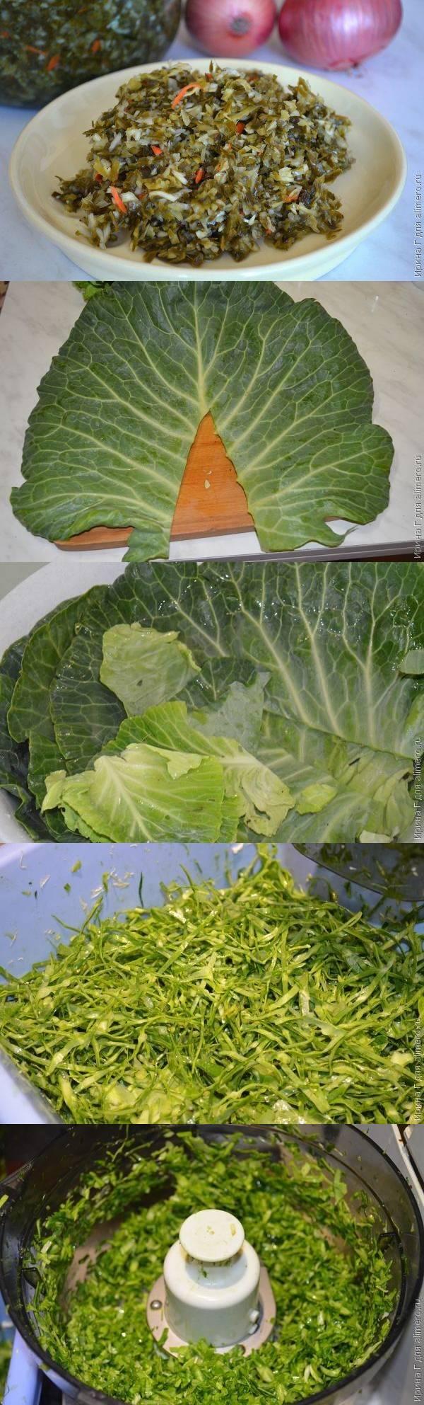 Заготовка на зеленые квашеные щи