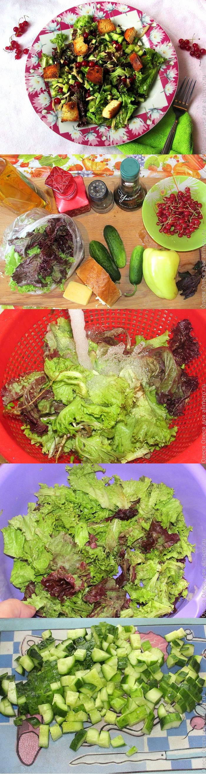 Зеленый салат с красной смородиной