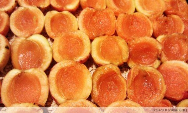 Шарлотка с абрикосами, рецепт