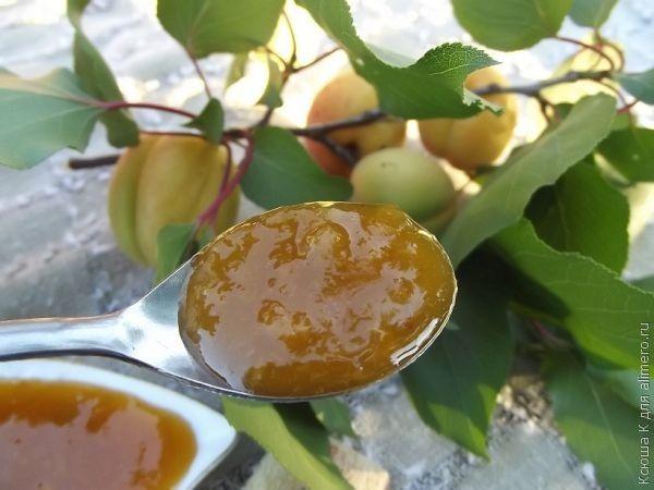 варенье абрикосовое рецепт