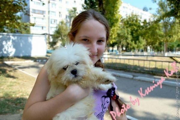 собачка и девочка