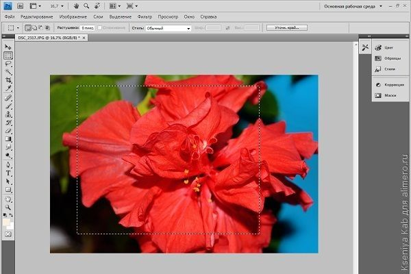 базовая обработка фото Photoshop