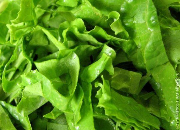 блюда из листьев салата рецепты с фото