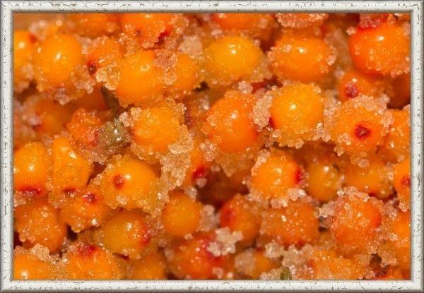 2. Сырое варенье. 1 кг ягод облепихи, 1,300 г сахара. Промытые и подсушенные ягоды перемешать с таким же весом сахара и уложить в простерилизованные банки на 3/4 объёма. Сверху ягод до самого края банки насыпать оставшийся сахар, закрыть крышкой и поставить на холод. Такая заготовка будет храниться в холодильнике больше года. Постепенно весь сахар растворится, а варенье сбережет все целебные свойства и красивую оранжевую окраску свежих ягод.