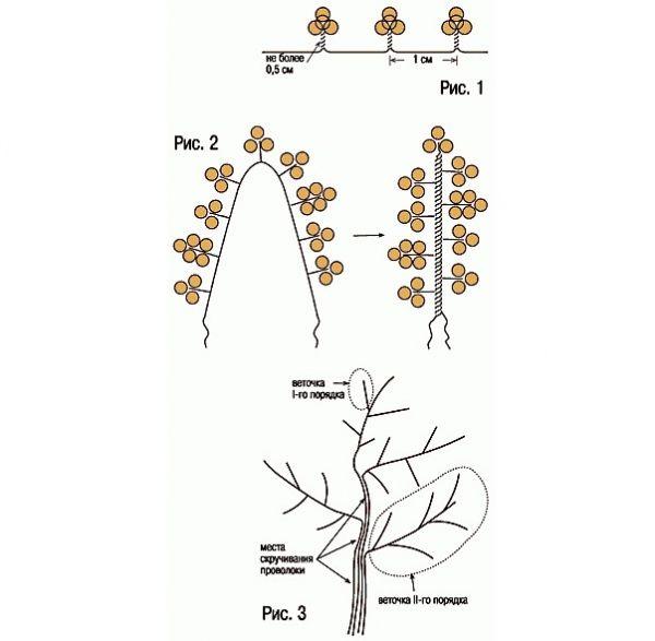 плетение из бисера деревья схема - Практическая схемотехника.