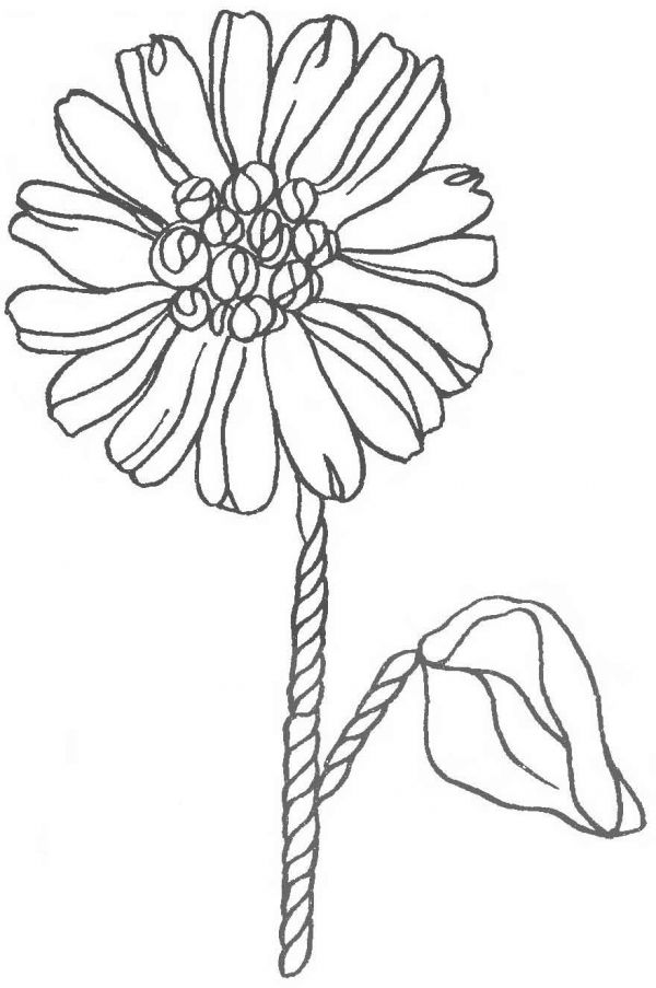 Эскиз ромашек для вышивки лентами