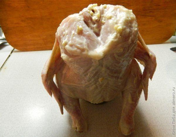 Курица на банке