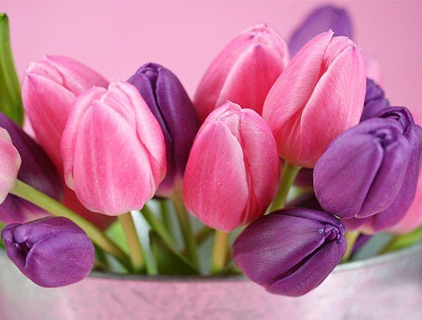Несмотря на то, что некоторые женщины заявляют, что не любят, когда им дарят цветы, этот вариант поздравления является наиболее универсальным.