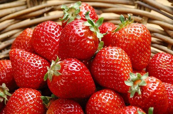 8.  Клубника. Внутрь каждой лепешки положить по 1 ягоде клубники. Размер лепешки можно легко увеличить, если ягода оказалась большой – для этого её можно немного растянуть руками. Сделать защип теста вокруг ягоды и скатать его руками в шарик.