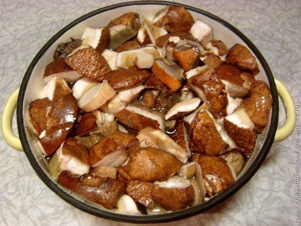 Второе из белых грибов