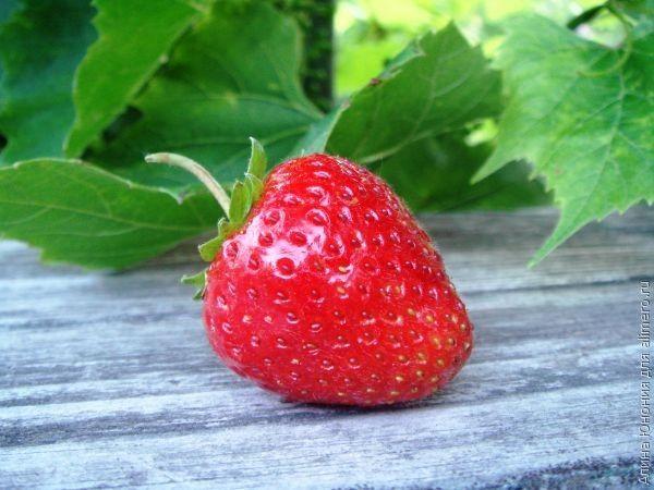 Натуральные продукты — мода или польза
