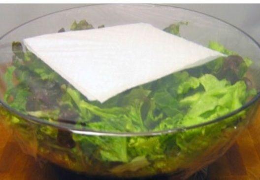 Чтобы зелень не загнила и не испортилась, нужно ее хорошенько обсушить, переложить в герметичный контейнер и не забыть вложить в него обычную бумажную салфетку. Секрет в том, что салфетка впитает конденсат, и он не останется на листиках.