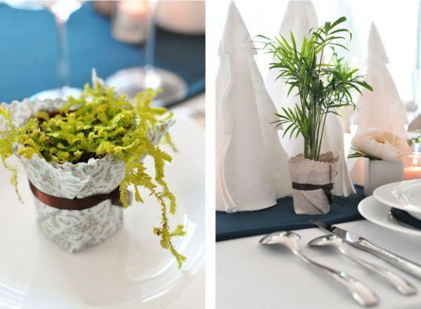 Выращивать в стаканах можно не только рассаду, но и вполне самодостаточные растения небольших размеров. Чтобы не портить внешний вид подоконника, задекорировать их можно при помощи фольги или ярких салфеток с лентами.