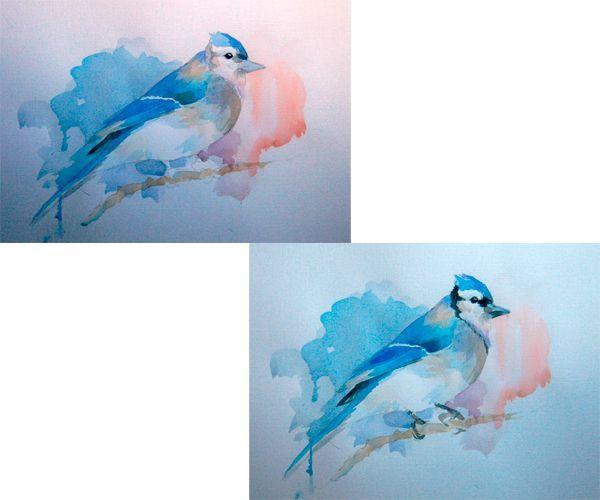 Оранжевым оттенком выделяем пространство перед птицей. Важно, чтобы тон был полупрозрачным. Темным оттенком выделяем глаза, перья и другие детали.