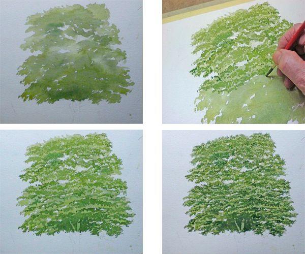 Начинаем рисовать дерево с кроны. Для начала берем один оттенок краски. Листву будем прорисовывать оттенком темнее. Для этого понадобится тонкая кисть.