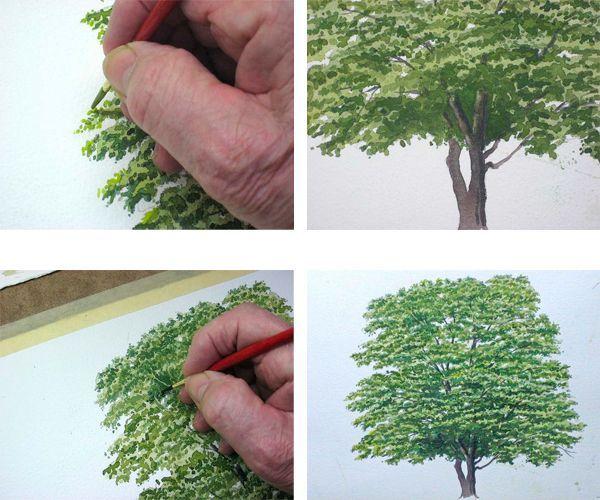 Когда крона будет готова, рисуем ствол. Не забываем прорисовывать ветки между листвы. Рисунок готов!