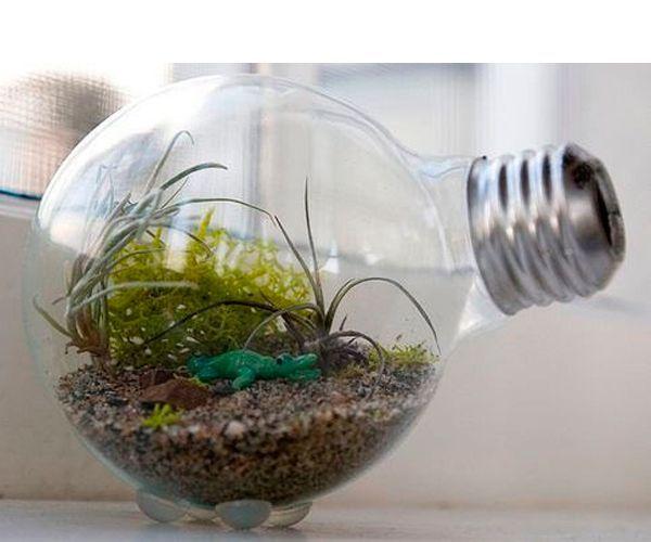 Простая, но очень увлекательная поделка - мини-сад в лампочке. Можно выращивать траву или водоросли. Также можно расположить в лампочке миниатюрные фигурки животных.