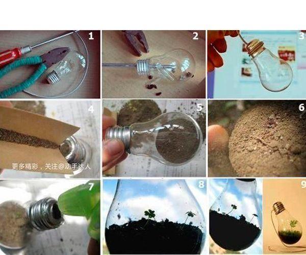 Нужно освободить лампочку от цоколя. Внутрь засыпать землю или налить воду. Насыпать семян или поместить веточку водоросли. Из проволоки можно сделать подставку.