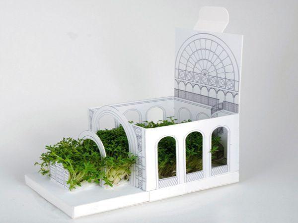 Необычные мини-сады