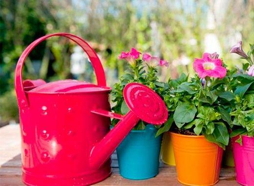 По такому же принципу зубочисткой можно проверить степень увлажненности почвы в цветочном горшке. Если к зубочистке прилипла влажная земля, значит, растение не нуждается в поливе, и наоборот.