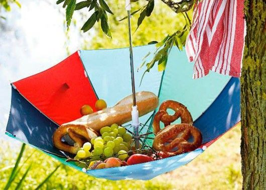 Зонт, повешенный на ветку, станет отличным решением для защиты еды от муравьев.