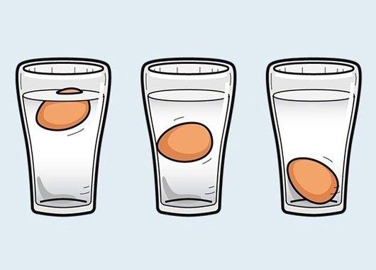Свежесть определяем так: кладем яйцо в миску с водой и наблюдаем. Лежит на дне — это значит, что яйцо свежее. Не опускается на дно и не всплывает — яйцо полежало, но годится в пищу. Всплыло — выбрасываем, оно несвежее.