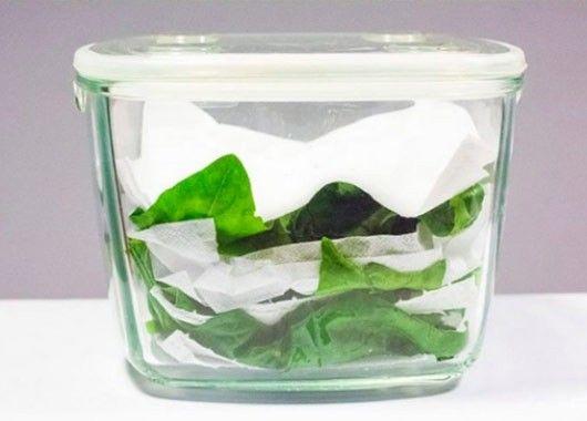 Салат или шпинат в контейнере перекладываем бумажными полотенцами. Это поможет зелени в два раза дольше оставаться свежей и без слизи.
