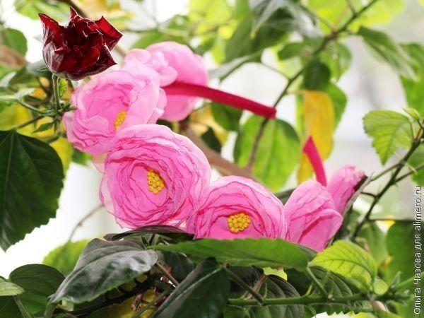 Ободок своими руками с цветочками из шифона