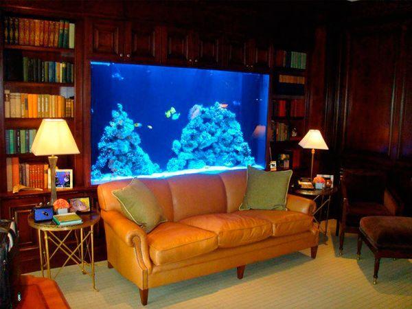 Вопрос ухода решается по-разному. Есть дизайнерские аквариумные фирмы, которые могут взять все заботы о рыбках на себя, и тогда заказ будет дешевле.