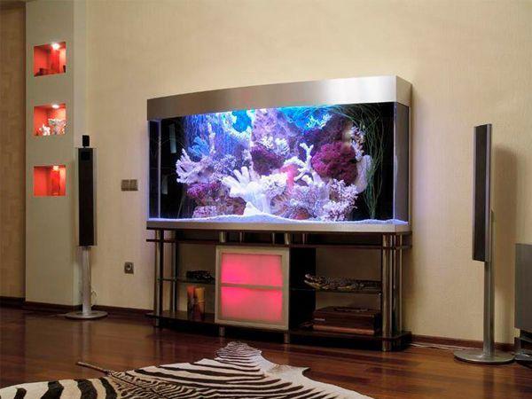 Самый популярный вариант в последнее время — размещение аквариума в гостиной. Там же, где уже прописались телевизор и камин. Ассоциация самая прямая: любите созерцать? Вот на выбор — динамичная спортивная игра, а вот огонь и вода.