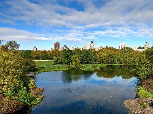 Центральный парк (Нью-Йорк, США). Здесь назначают свидание тысячам влюбленных. В разное время года в парке можно кататься на коньках и санках, бегать, ловить рыбу, плавать на лодке, собирать грибы, запускать воздушных змеев, кормить белок и птиц, устраивать пикники или праздновать свадьбы, играть и просто валяться на траве.