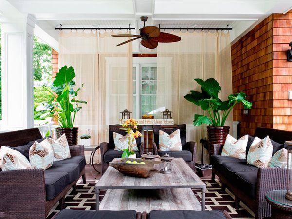 Комнатные растения в интерьере гостиной