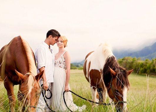 Фотосессия с лошадьми