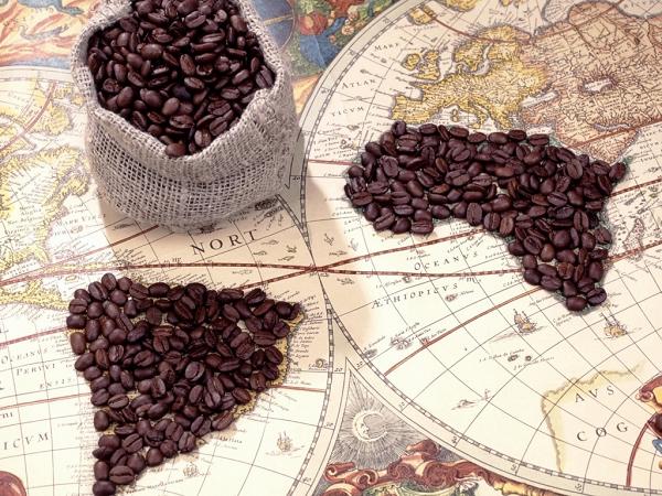 Кофе выращивается в 45 странах мира, но лидерами являются Африка и Южной Америка. Самым крупным производителем и экспортером кофе является Бразилия. На эту страну приходится треть всего производства кофе в мире.
