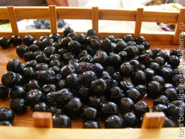 полезные чаи, черноплодная рябина