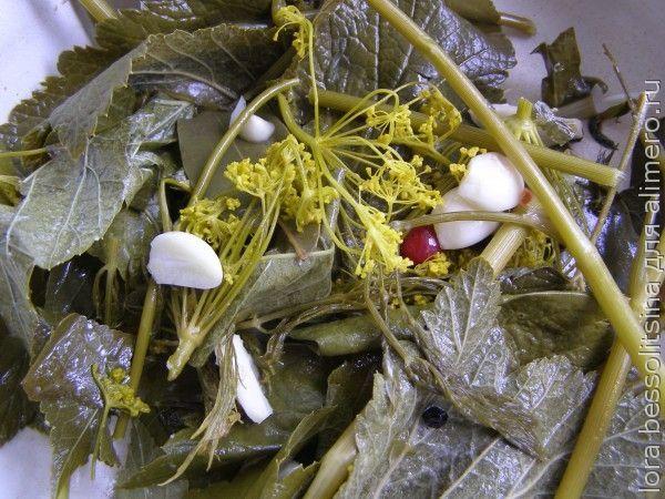 огурцы соленые, специи после кипятка