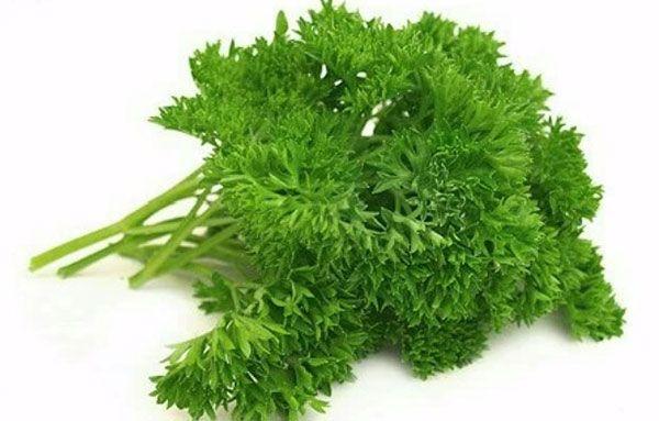 Кервель. Его листья по виду похожи на петрушку, а вот вкус напоминает анис. Эта пряность хорошо сочетается с бараниной и свининой. Ее можно добавлять в салаты, омлеты и творожные (закусочные) запеканки.