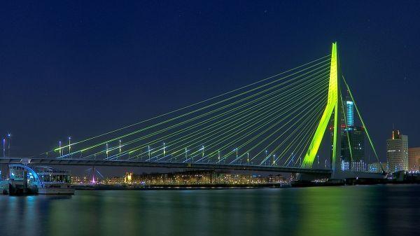Мост «Эразма», расположенный  в Роттердаме, давно получил второе название – «Лебедь». Похоже, не так ли? Оригинальная опора напоминает шею лебедя, а система тросов – крылья.