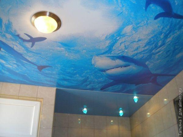 Почувствуйте себя героем подводной одиссеи. Толща воды и грозные акулы над головой – картинка не для слабонервных. Особенно, на первый взгляд.