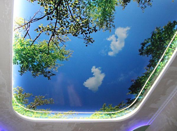 Летнее небо над головой, легкие облака и зелень высоких деревьев. Под таким потолком и зимой можно окунуться в мечты о теплых, солнечных  деньках.