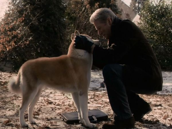 «Хатико: Самый верный друг». Еще несмышленым щенком Хатико обрел друга в лице профессора Паркера Уилсона. Каждый день он провожал и встречал своего хозяина на вокзале. И даже когда профессор умер, верный пес продолжал его ждать.