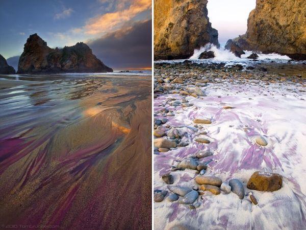 Фиолетовый пляж Пфайфер Бич, Калифорния. Песок такого невероятного цвета образовался в результате размывания водой пород, содержащих марганец в прибрежных холмах.