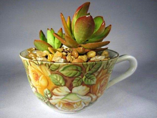 Немного треснувшая чашка может послужить в качестве цветочного вазона для небольших растений. Главное, на ее донышко нужно уложить хороший слой дренажа, а трещину (при необходимости) склеить суперклеем.