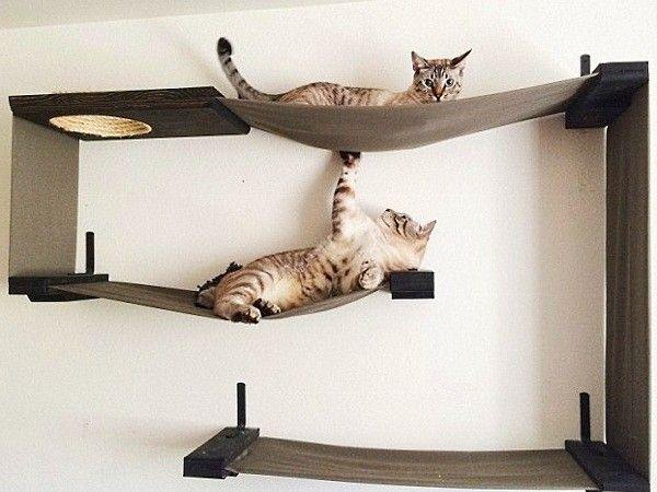 Домики для котов