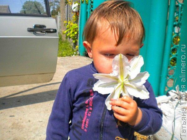 Мальчик, цветы