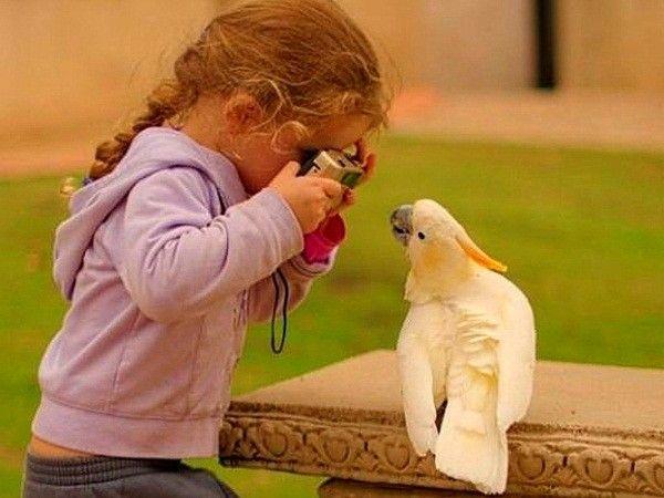 Эй, крошка, объектив открой!